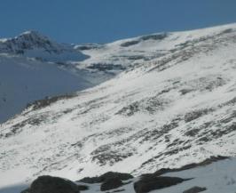 Informe semanal de condiciones: 24/11/2011