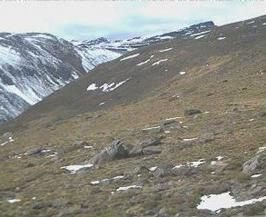 Webcam en DIRECTO hacia el Veleta